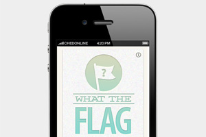 What The Flag App thumbnail